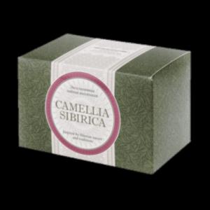 Чайный напиток с саган-дайлей - Camellia sibirica