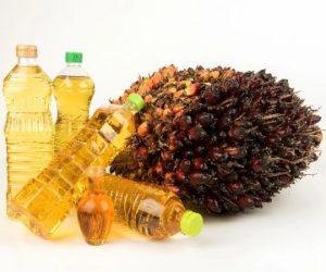 Пальмовое масло как козел отпущения                               14 мая 2020